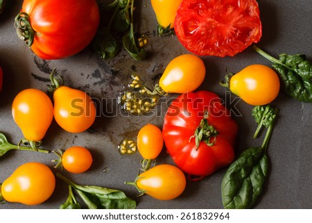 fresh tomatoes with spinach leaves - stock photo