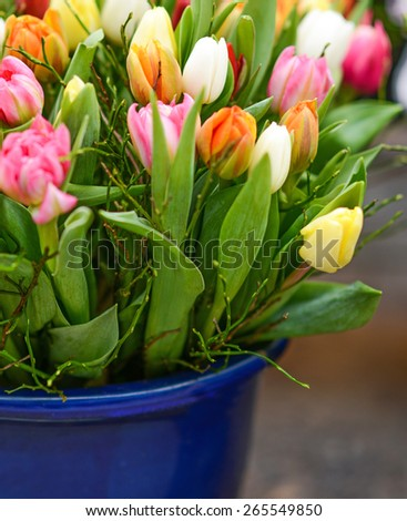 Fresh tulips in vase - stock photo