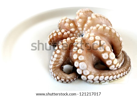Fresh uncooked octopus in a plate, white background
