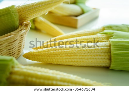 Fresh Vegetable and Clean Baby Corns for Cooking - stock photo