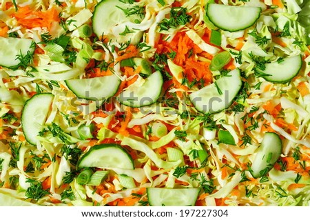 Fresh vegetable salad with cabbage, carrot, green onion and cucumber  - stock photo