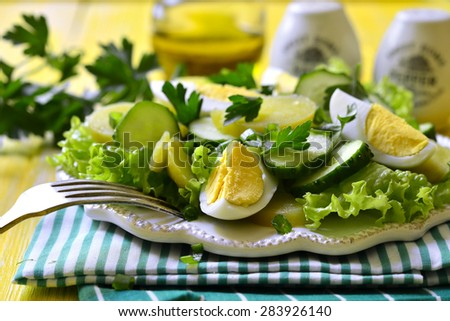 Fresh vegetable salad with eggs on a white plate.