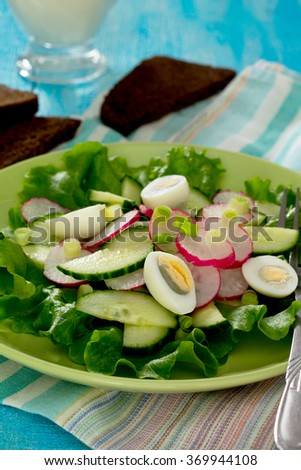 Fresh vegetable salad with sour cream, radish, cucumber and lettuce.