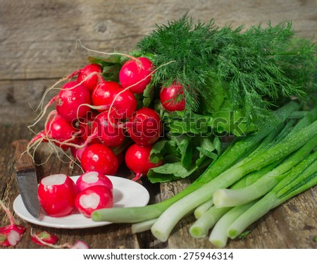 Fresh vegetables from the garden on a wooden table - radishes,  green onion, dill