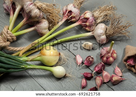 Fresh vegetables, garlic, onion on a gray wooden background.
