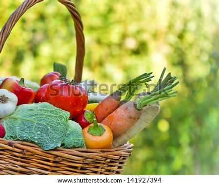 Fresh vegetables - Healthy food