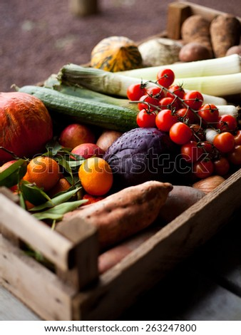 Fresh vegetables in boxes, baskets. Tomatoes, cucumber, potatoes, cabbage, pepper, pumpkin, clementines, onions and leeks. Spring, summer products, seasonal vegetables. Garden market.  - stock photo