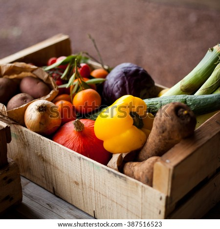 Fresh vegetables in boxes, baskets. Tomatoes, cucumber, potatoes, cabbage, pepper, pumpkin, clementines, onions and leeks. Spring, summer products, seasonal vegetables. Garden market.
