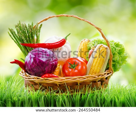 Fresh vegetables in the basket on green grass and on nature background. Purple cabbage, red chilli, green asparagus, white pumpkin, red tomatoes, lettuce and yellow corn. Organic healthy eco food. - stock photo
