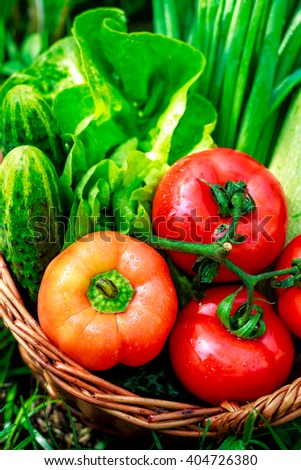 Fresh vegetables in weaved basket on grass with green background