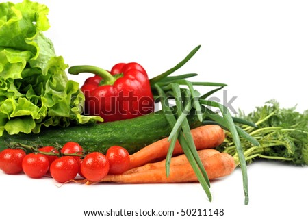 fresh vegetables. Included are  tomatoes, carrots, cucumber, onions