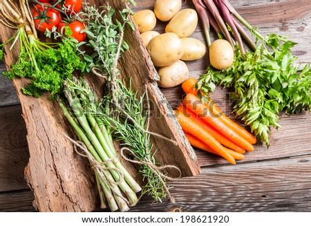 Fresh vegetables on bark - stock photo