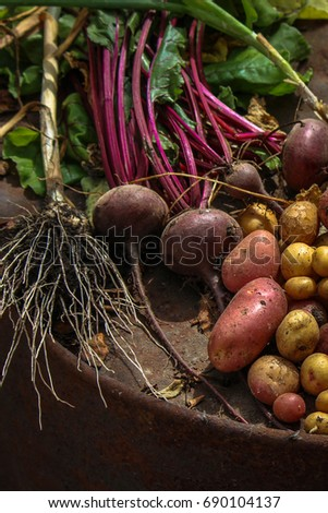 Fresh vegetables: potatoes, beets, onions, garlic, dill