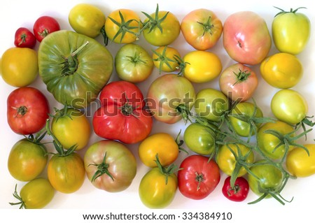 Fresh vegetables. Tomatoes on white background - stock photo