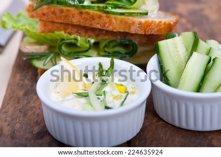 fresh vegetarian sandwich with garlic cheese dip salad on rustic table - stock photo