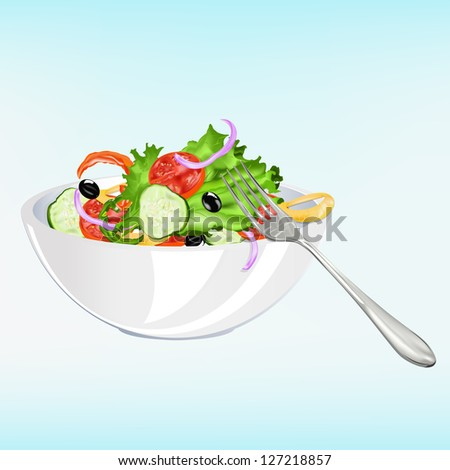 Fresh vegetarian vegetable salad .Healthy food