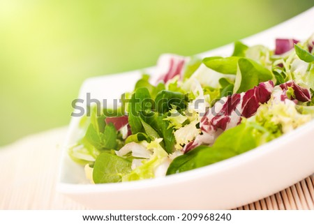 Fresh vitamin green salad with spinach,arugula, and lettuce