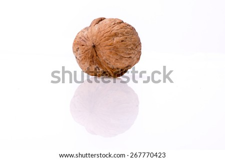 Fresh walnut isolated on the white background
