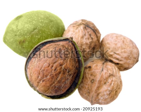 Fresh walnut with leaves isolated on white