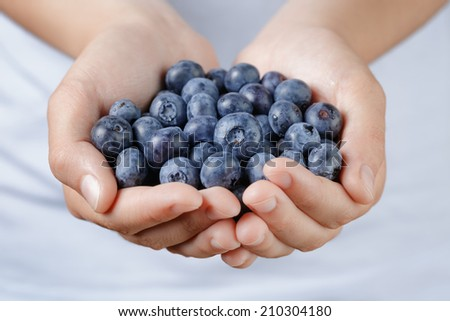 fresh washed blueberries in female teen hands, shallow dof - stock photo