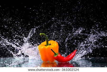fresh water splash on red sweet pepper in black background with copy space - stock photo