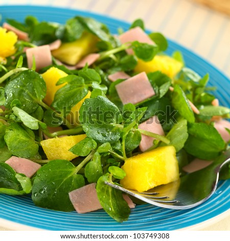 Fresh watercress, pineapple and ham salad on blue plate with a fork (Selective Focus, Focus on the pineapple pieces in the front)