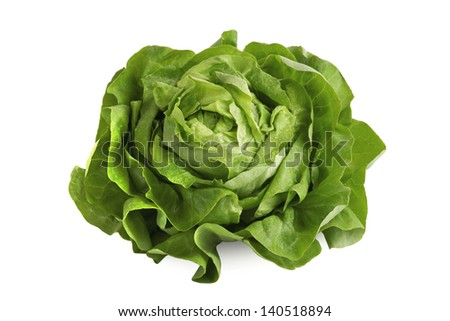 Fresh wet green butterhead salad isolated on white background - stock photo