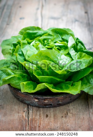 Fresh wet lettuce salad on wooden table