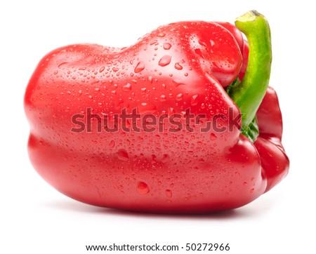 fresh wet red paprika isolated on white - stock photo