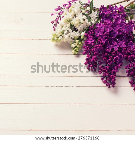 Fresh white and violet lilac flowers on white painted wooden planks. Selective focus. Place for text. Square image. - stock photo
