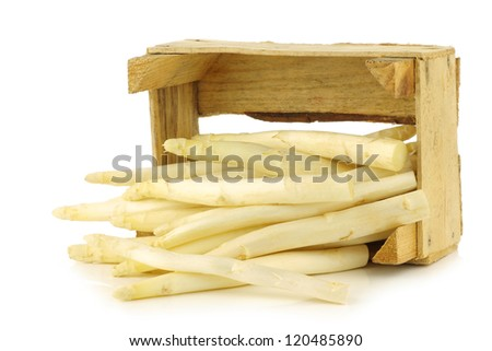 fresh white asparagus shoots in a wooden crate on a white background - stock photo