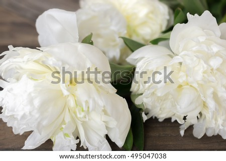 Fresh white Peonies. Close up flowers on wood background.