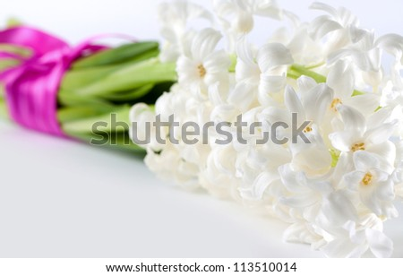 Fresh white spring Hyacinth with a decorative ribbon conceptual of purity and love