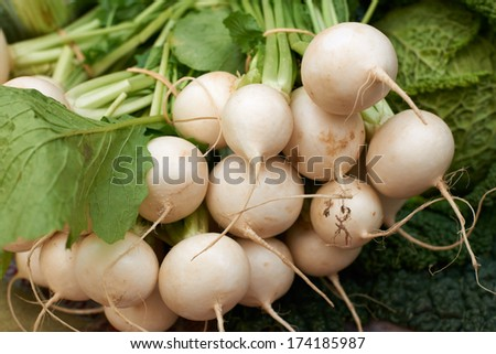 Fresh white turnip vegetables for sale on Provence market of Marseille, South France