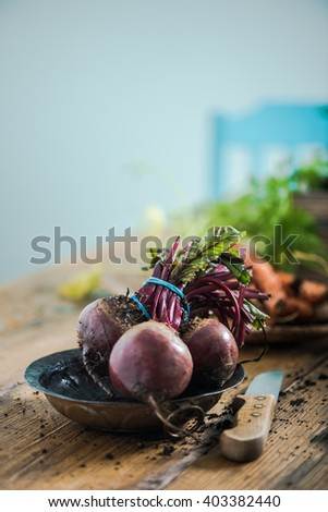 Fresh whole beetroot from garden soil, on wooden farmhouse table in kitchen. Copy space for text. - stock photo