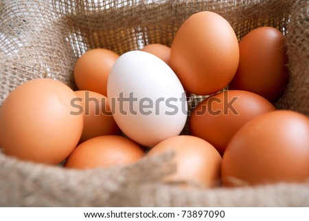 Fresh yellow eggs in the bascket with white one in the middle - stock photo