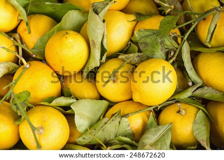 Fresh yellow lemons in a box for sale - stock photo