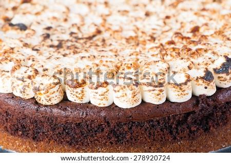 freshly bake smores cake with toasted marshmallows on top - stock photo