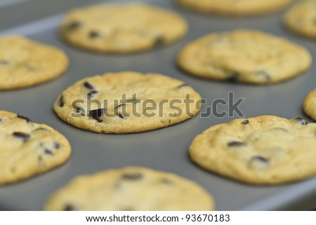 freshly baked cookies on a baking tray, home baked - stock photo