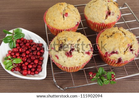 Freshly baked cranberry  muffins on cooling rack with dish of cranberries. - stock photo