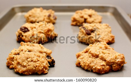 Freshly baked oatmeal raisin cookies cooling on a baking sheet