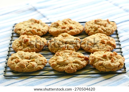 Freshly baked peanut butter cookies on cooling rack  - stock photo