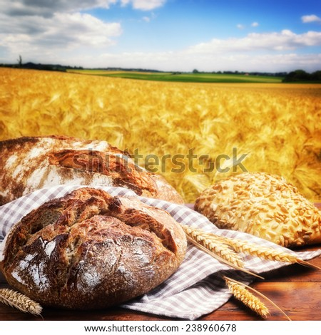 Freshly baked traditional bread with golden wheat field on background - stock photo