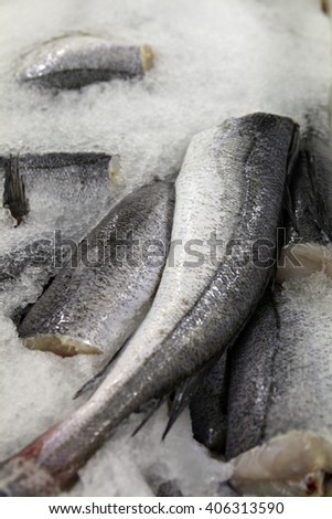 Freshly caught hake stored on ice in preparation to be sold at a fish market or processed at a fish factory. - stock photo