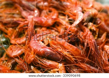 Freshly caught prawns sold at the fish market - stock photo