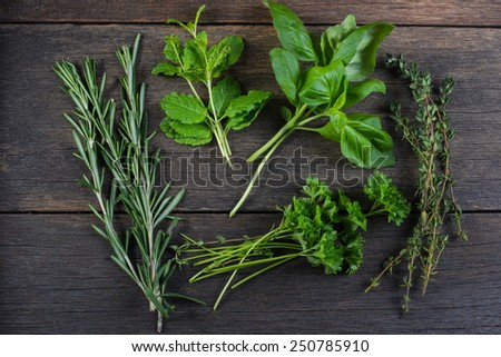 Freshly clipped herbs on wooden background - stock photo