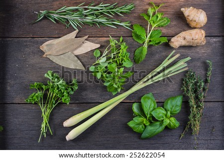 Freshly clliped herbs on wooden background - stock photo