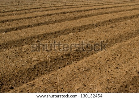 Freshly cultivated field - stock photo
