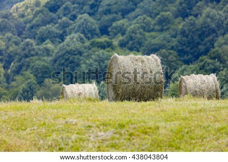 Freshly cut and baled round bales of hay - stock photo