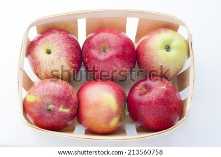 Freshly harvested apples - stock photo